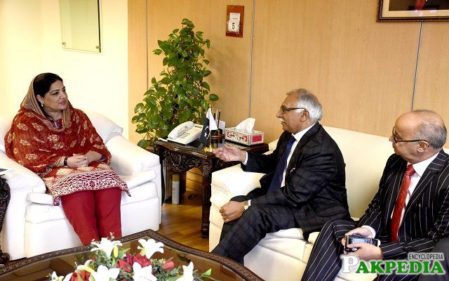 While discussing cooperation in IT sector