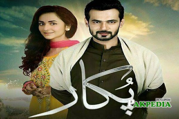Saad Qureshi Dramas