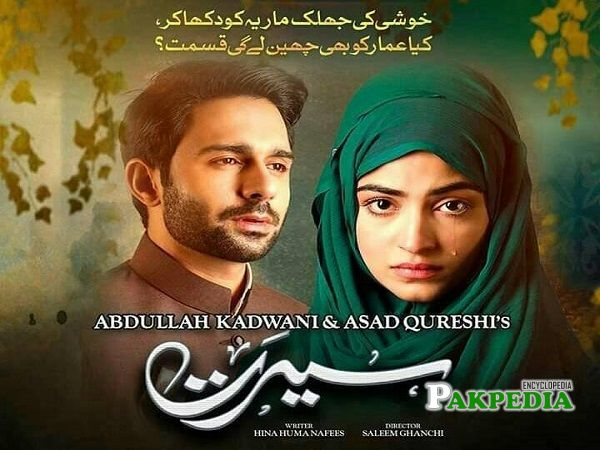 Hamza Firdous Dramas