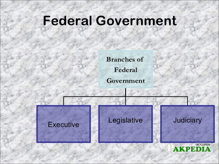 Branches of Government of Pakistan