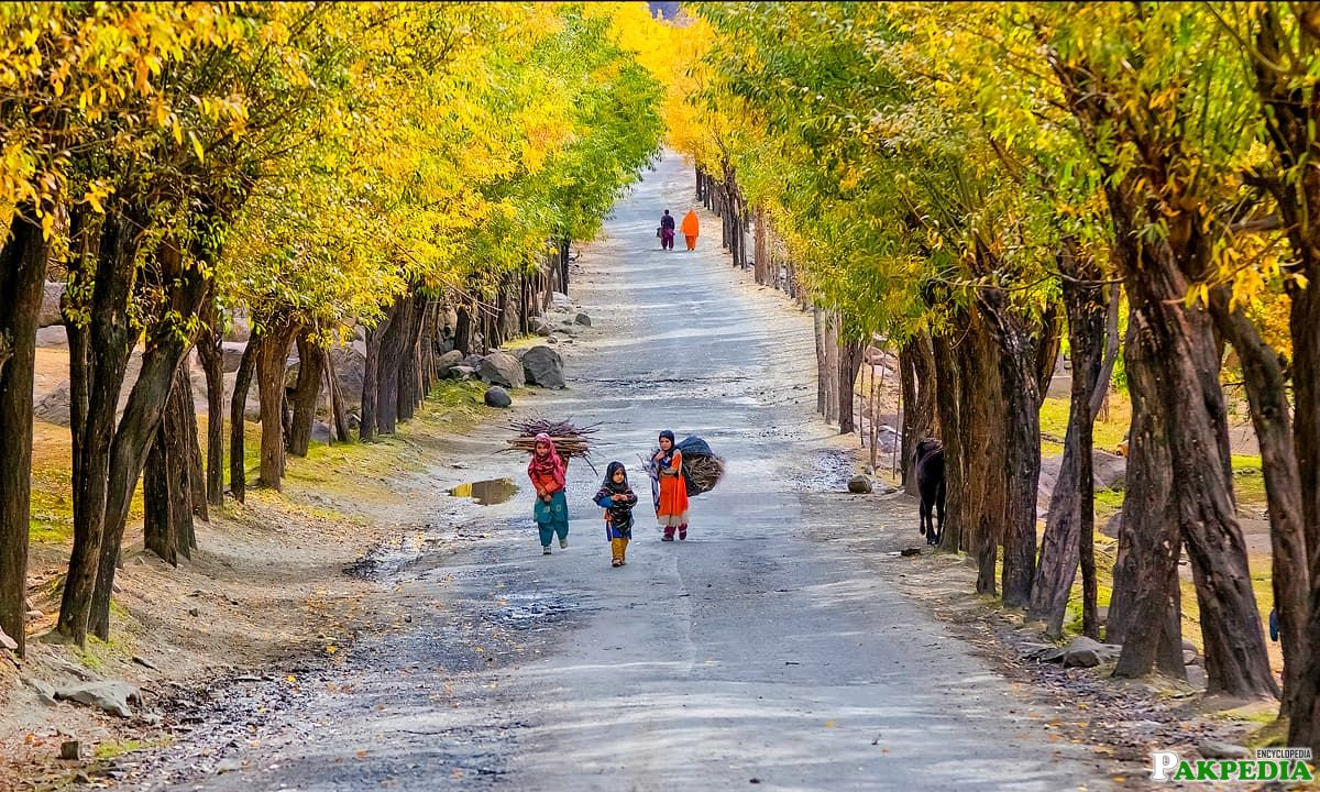 Skardu Road Pakistan