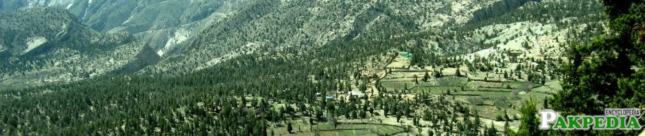 Ziarat Amaizing