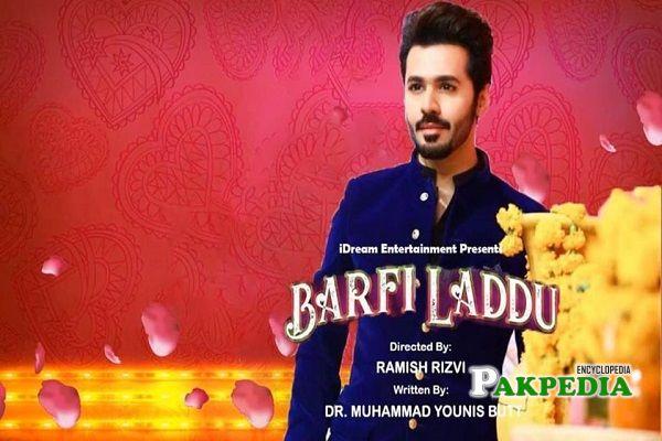 Syed Saim Ali Dramas
