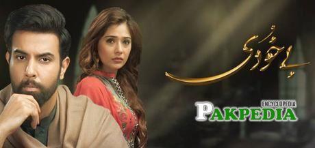 Noor Hassan Dramas