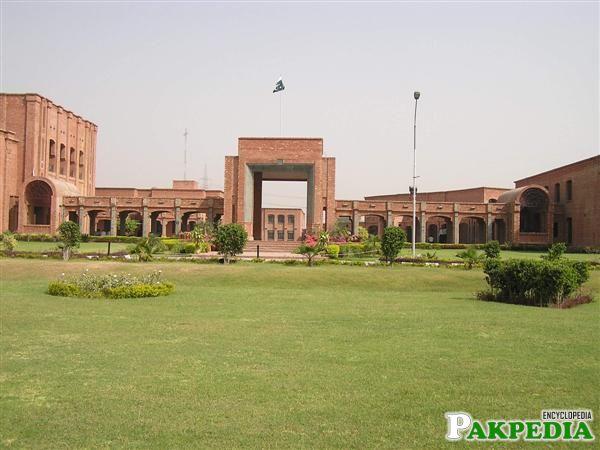 University in vehari