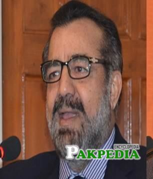 Vice Chairperson of Punjab Overseas Pakistanis Commission
