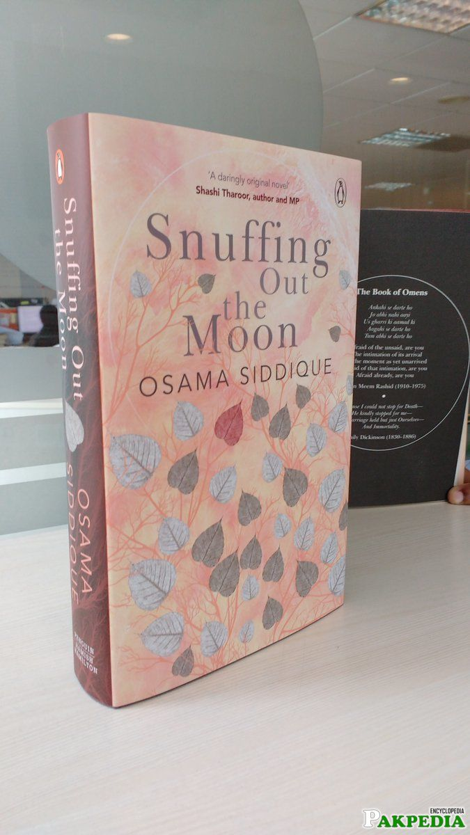 Snuffing out the Moon