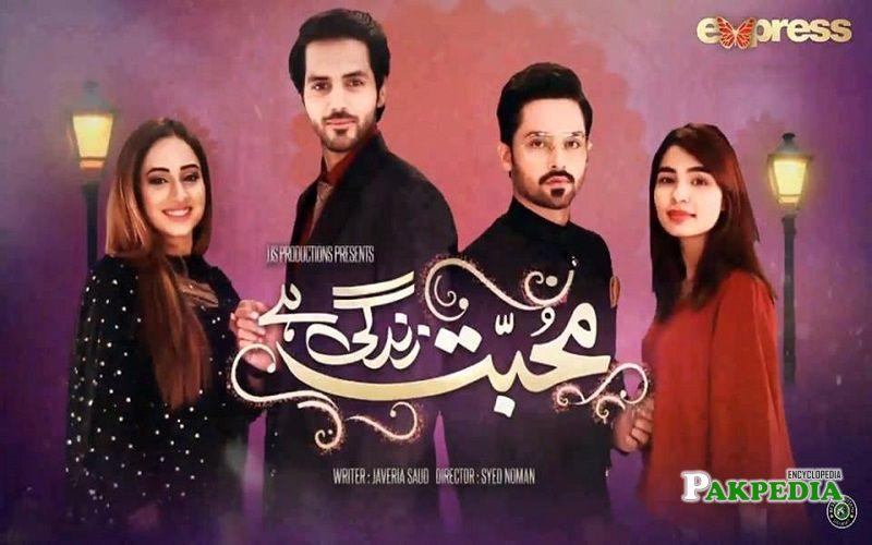 Rizwan Ali Jaffri Dramas