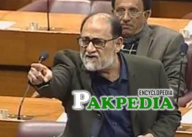 Rohale Asghar in National Assembly