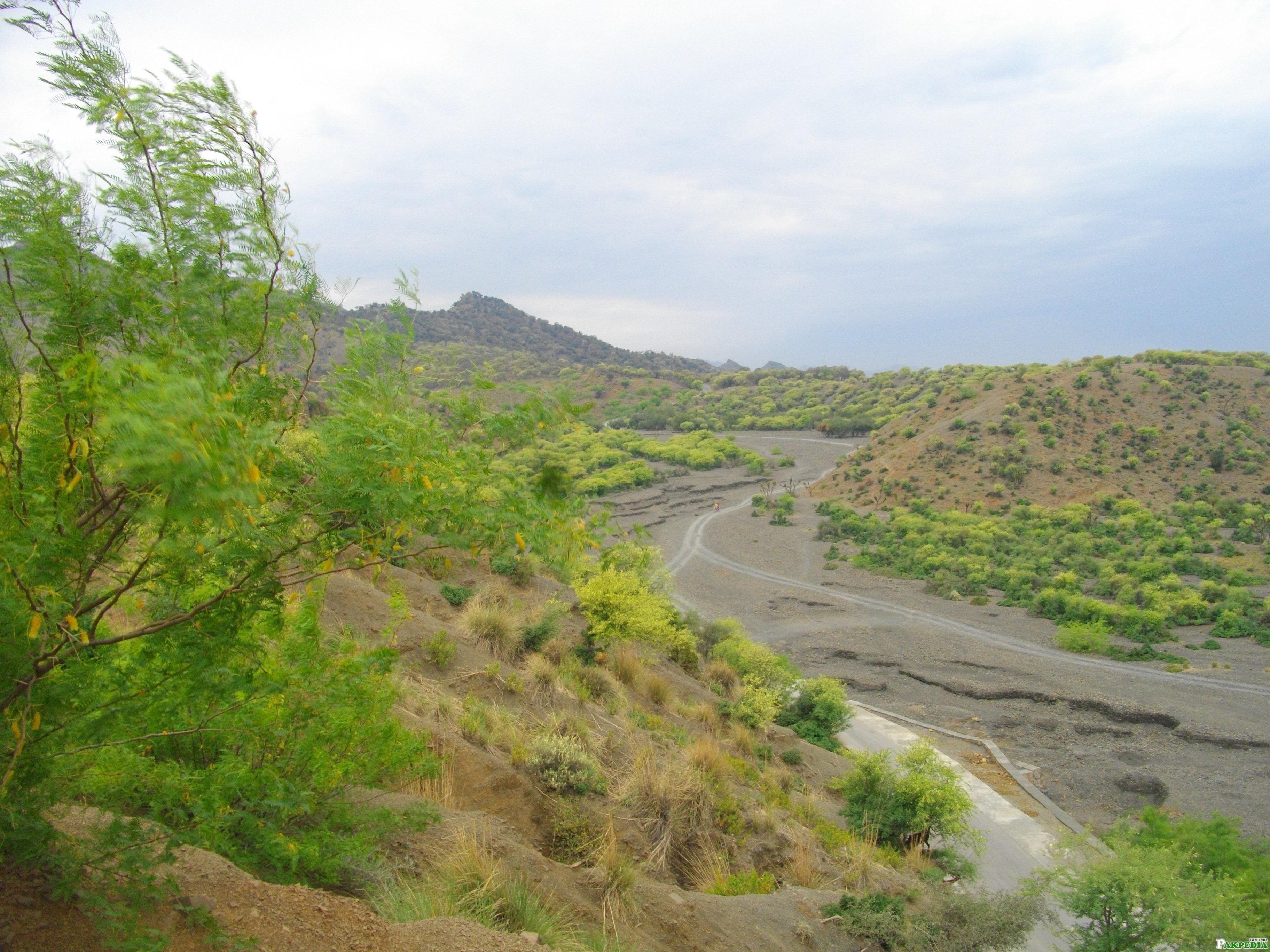 Ziarat Green VIEW