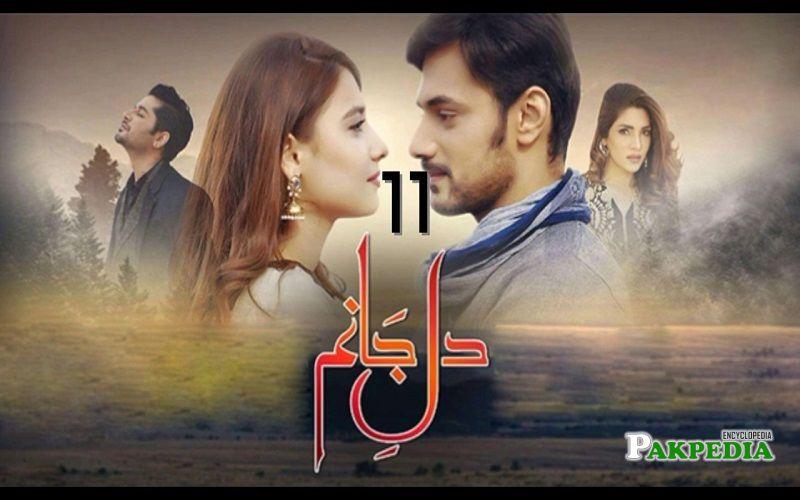 Hina Altaf Dramas