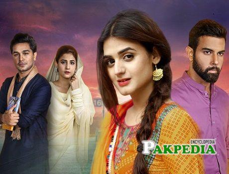 Hira Salman dramas