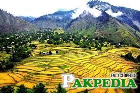 Jhelum Valley Amaizing