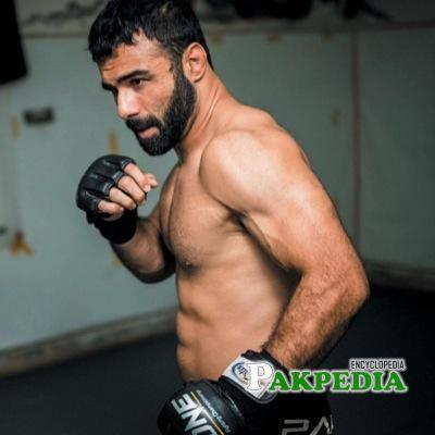 Mixed Martial Artist