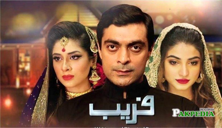 Kinza Hashmi dramas 'Faraib'