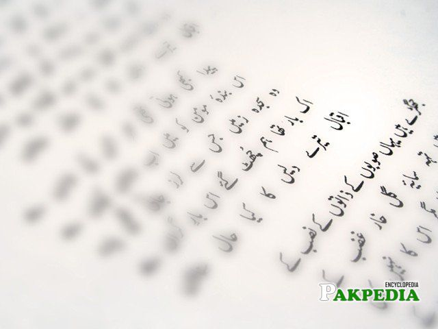 The collection of poems by journalist and writer Ahfazur Rahman depicts Pakistan's predicaments