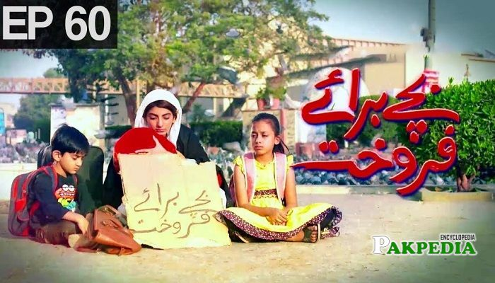 Mariam Ansari Dramas