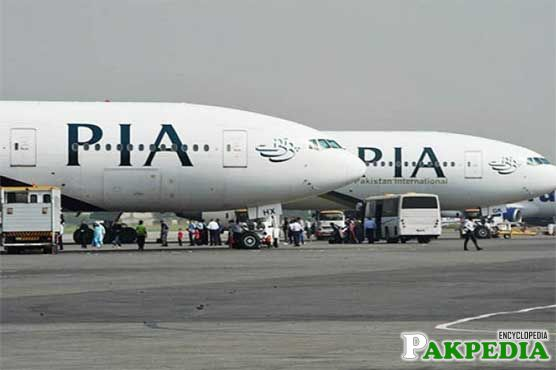 AIIA Terminal