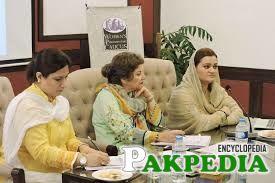 Maryam Aurangzeb in Important Meeting