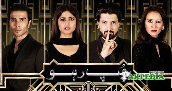 Feroze Khan Dramas