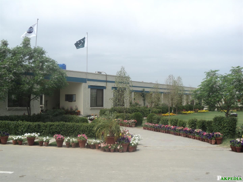 Vehari campus