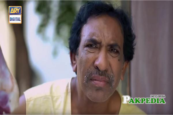 Nayyar Ejaz Dramas