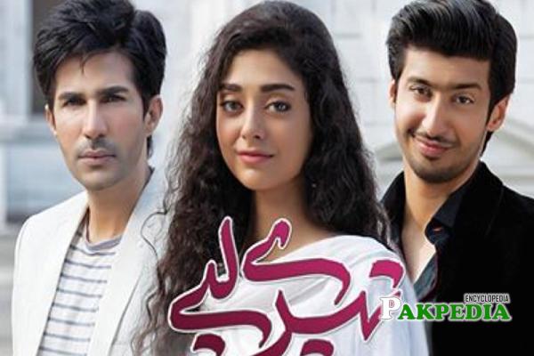 Adeel Chaudhry Dramas
