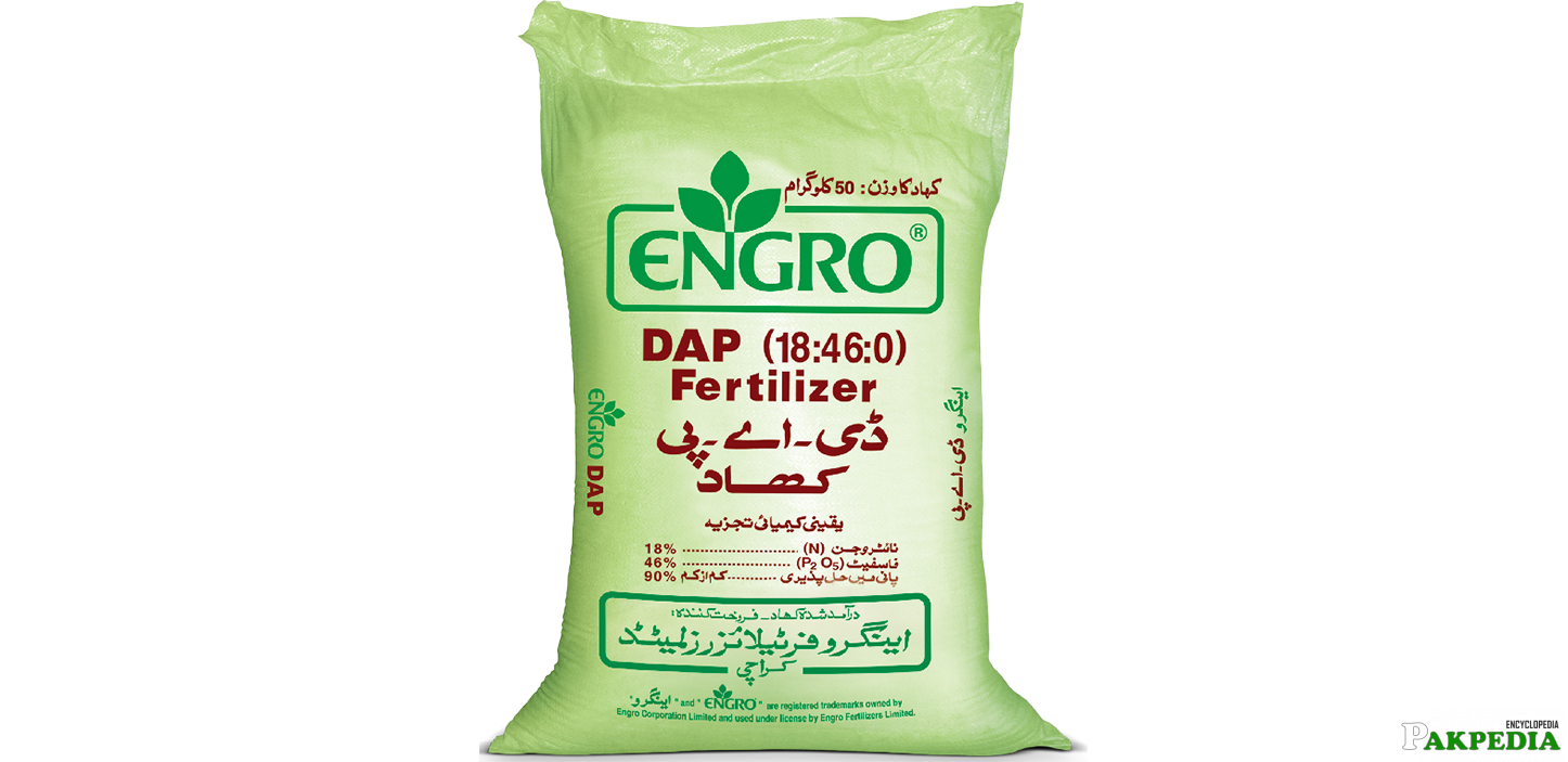 Engro Corporation Product DAP