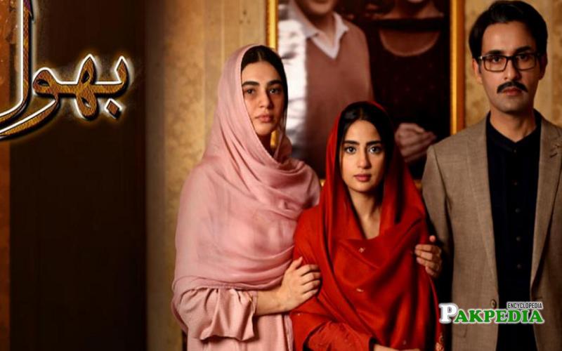 Hassan Hayat Khan Dramas